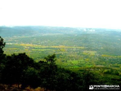 Reserva Natural del Valle de Iruelas;ruta la pedriza ruta bola del mundo bosques en madrid